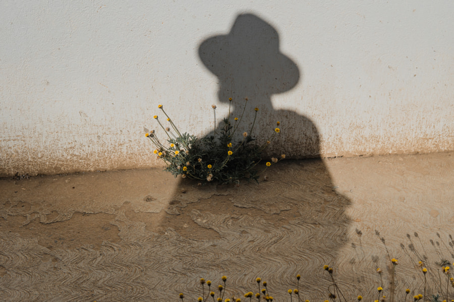 Shadow of a man sprouting flowers | @LostBoyMemoirs by Ryan Brown | @lostboymemoirs on 500px.com