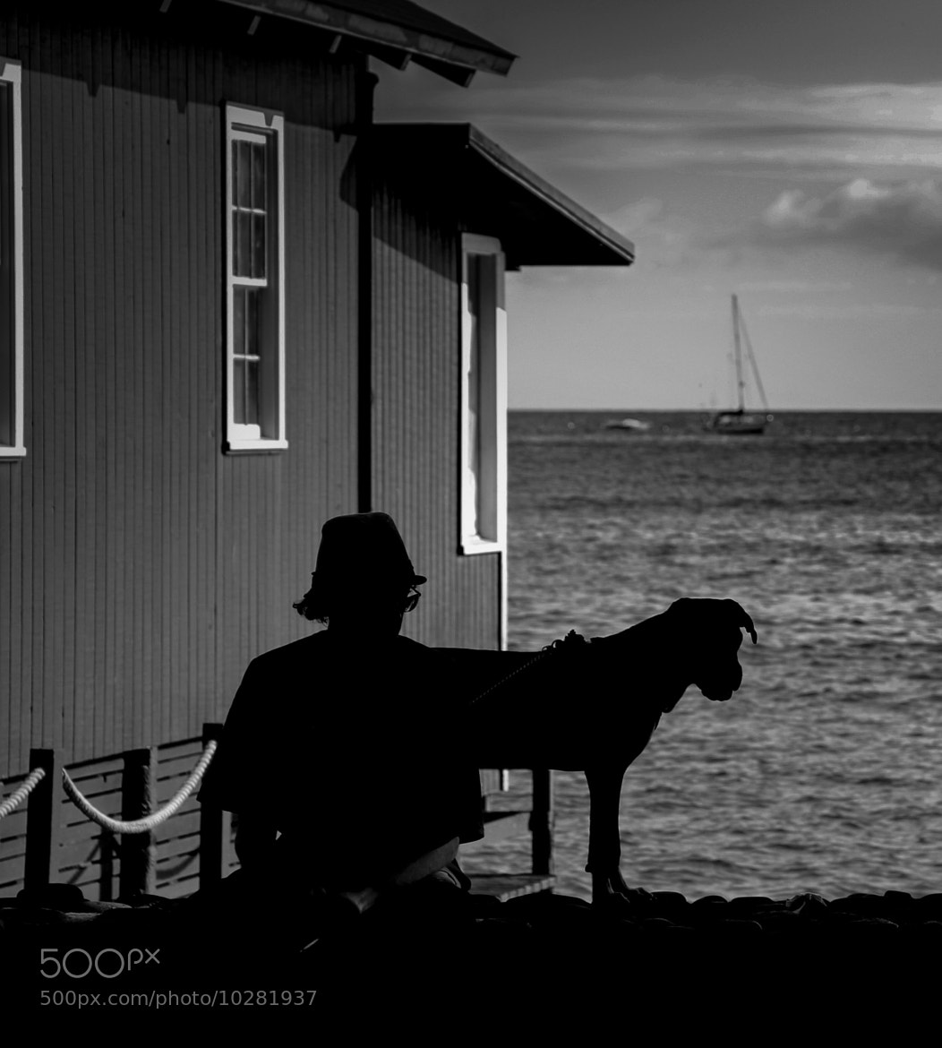 Photograph A Man and His Dog by Ben Herricks on 500px