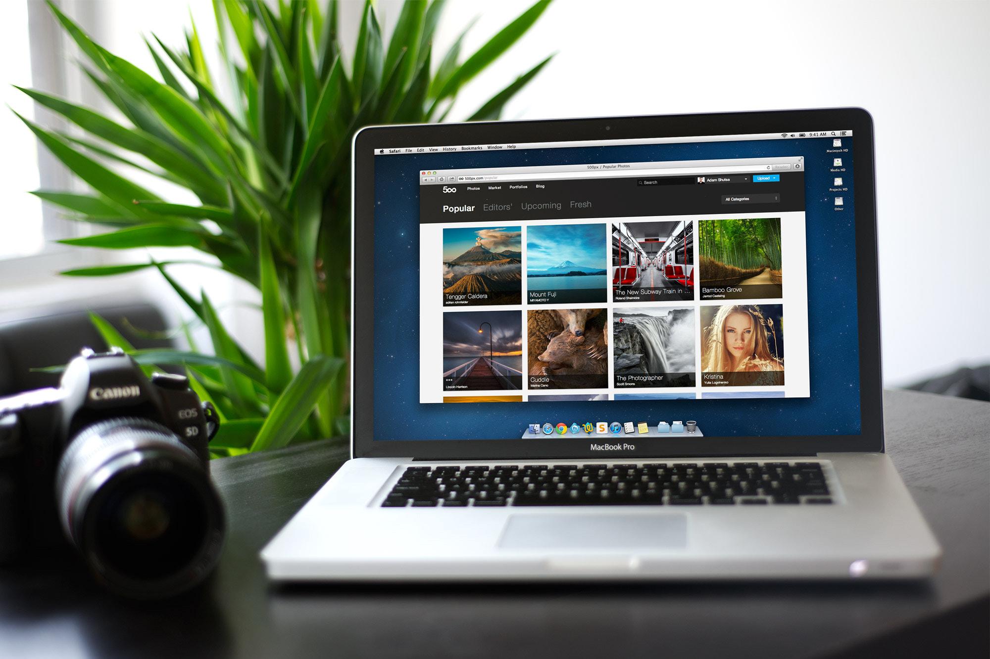 WordPress Web Development Company in India