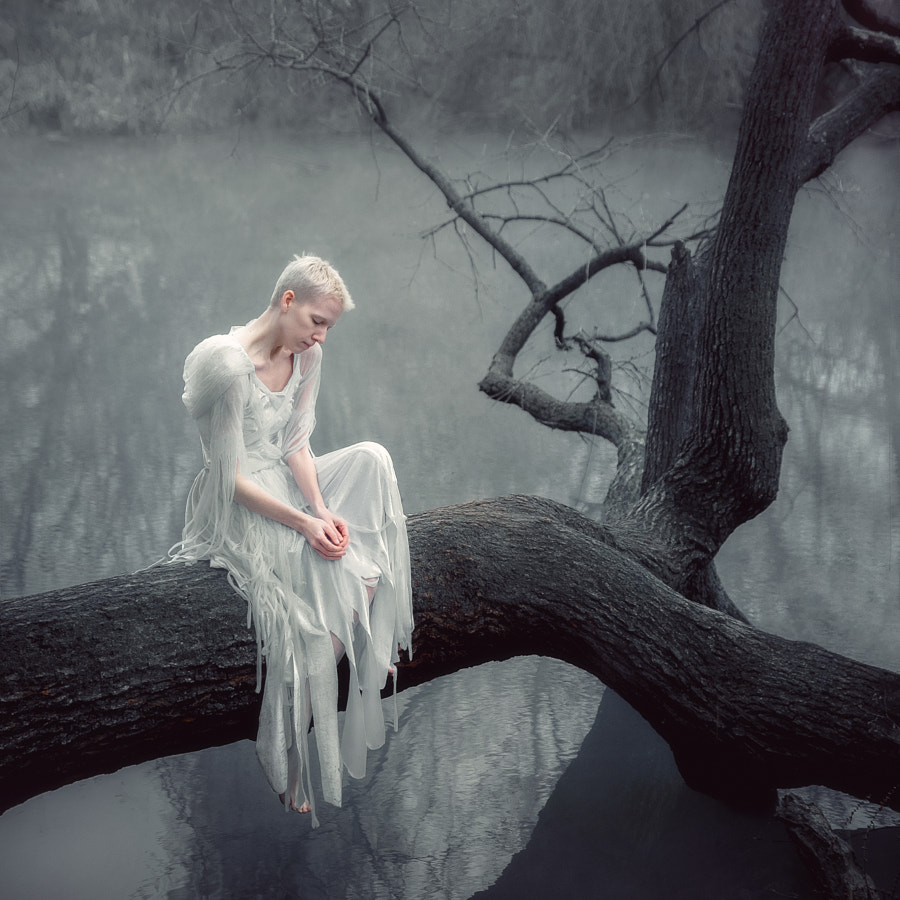 Fallen by Andrew Vasiliev on 500px.com