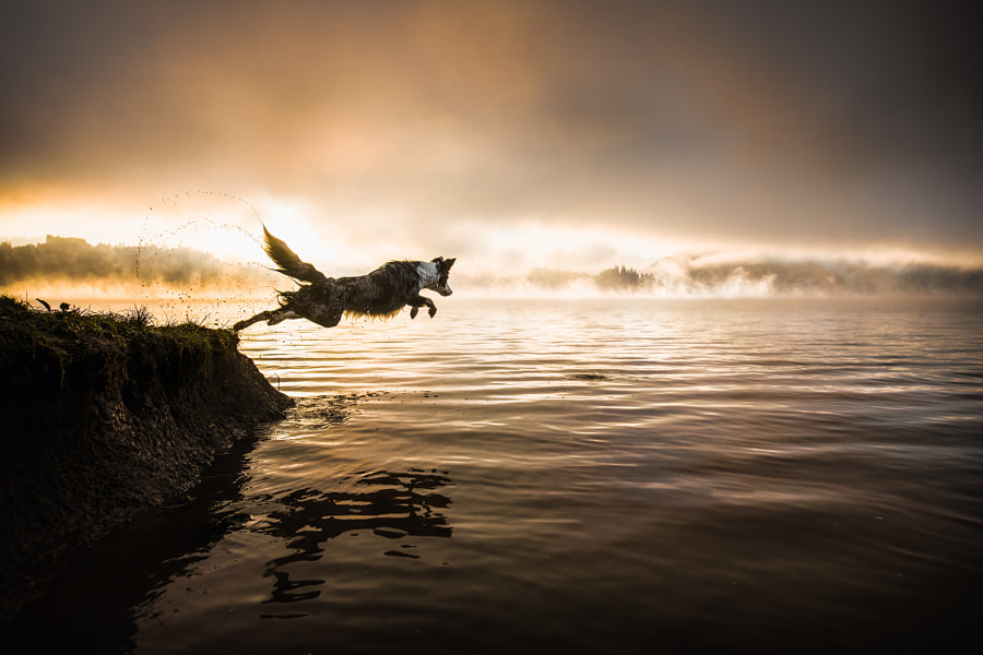 Bathing in the sunrise by Iza ?yso? on 500px.com