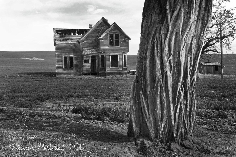 "Photograph ""Grandma Olsen"" by Steven  Michael on 500px"
