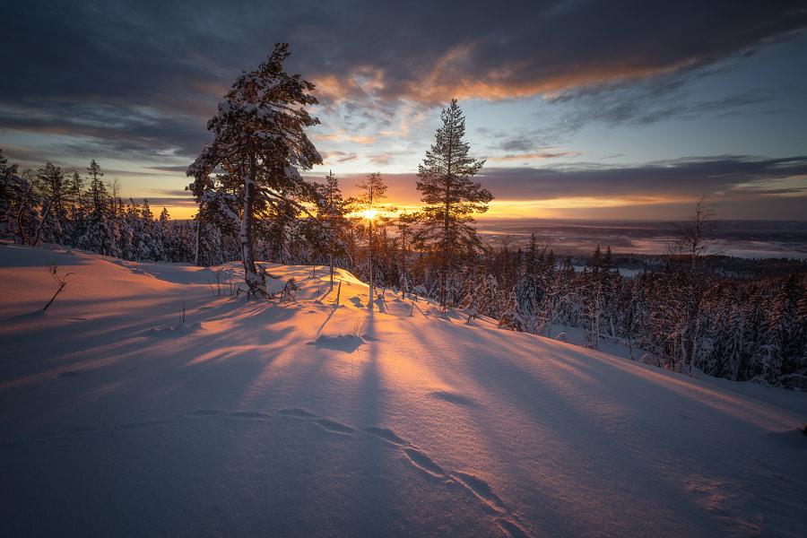 Top View by Ole Henrik Skjelstad on 500px.com