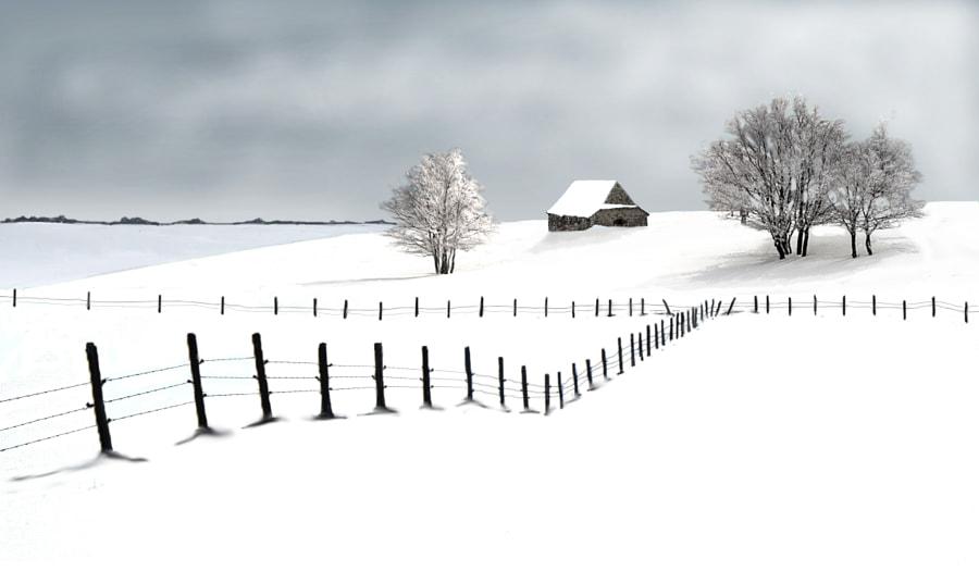 Aubrac  by roland lenert on 500px.com