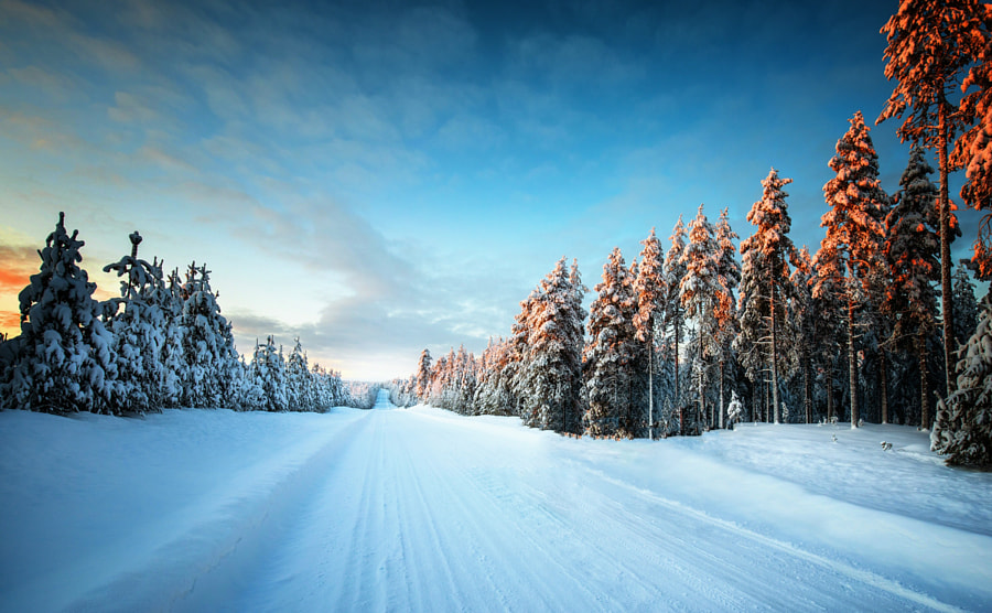 Never Ending Winter Road by Carsten Meyerdierks on 500px.com