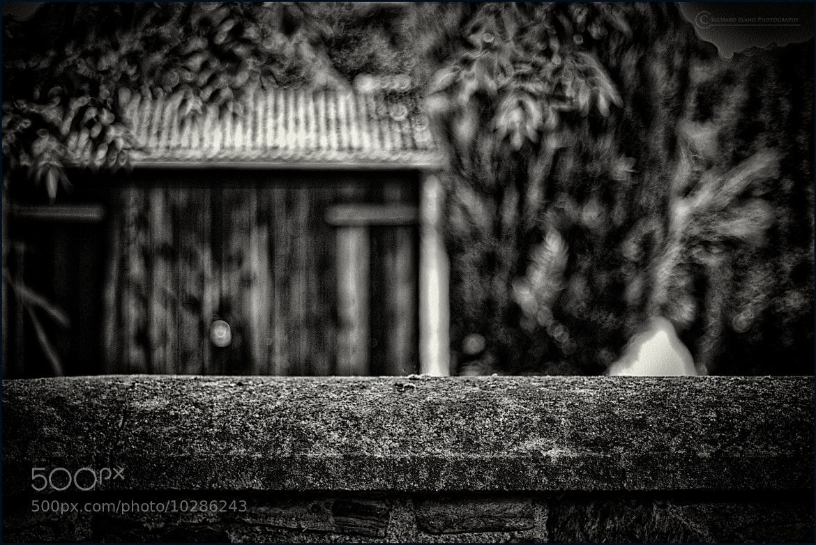Photograph Over the Wall by Richard Bland on 500px