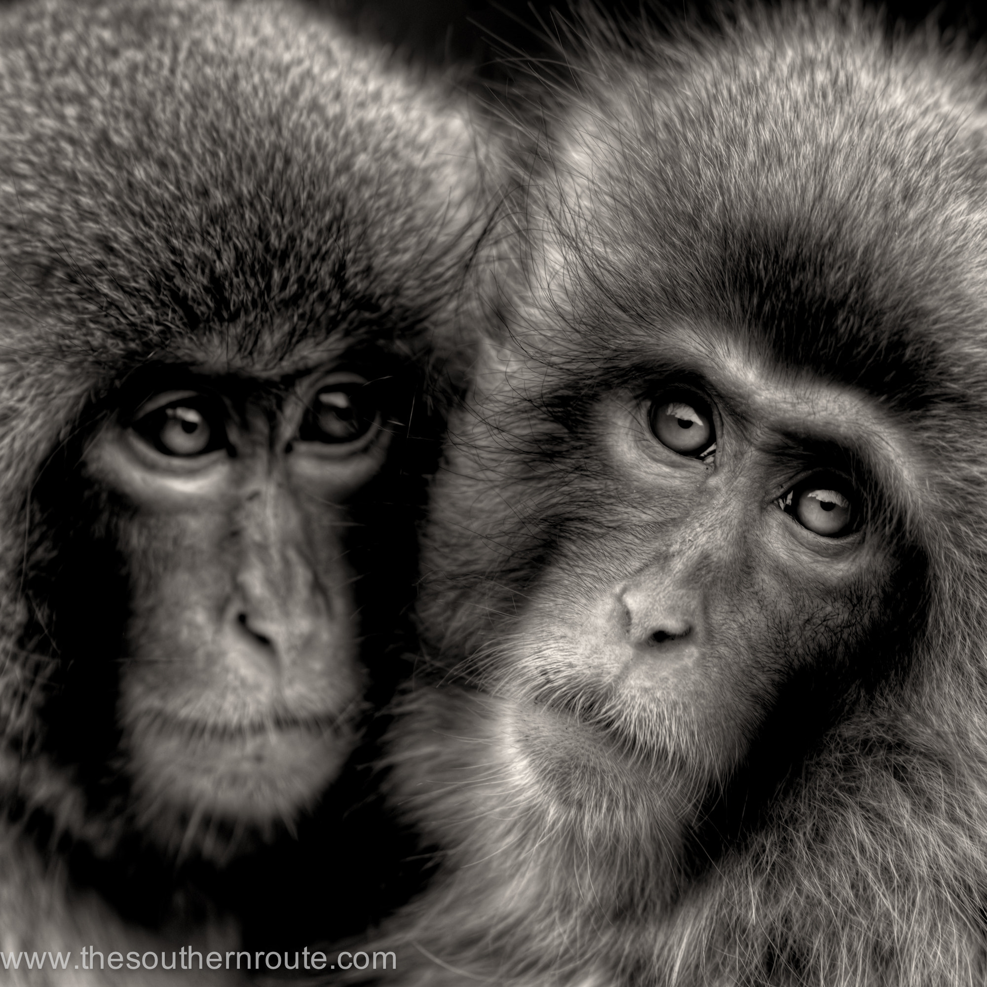 Photograph The eye of the soul by regis boileau on 500px