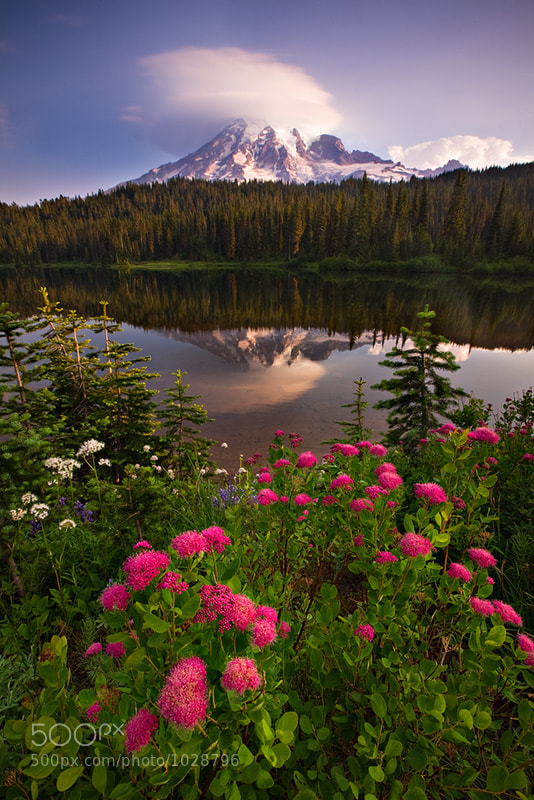 Photograph Reflection Lakes, Mt. Rainier National Park by Kevin  Pieper on 500px