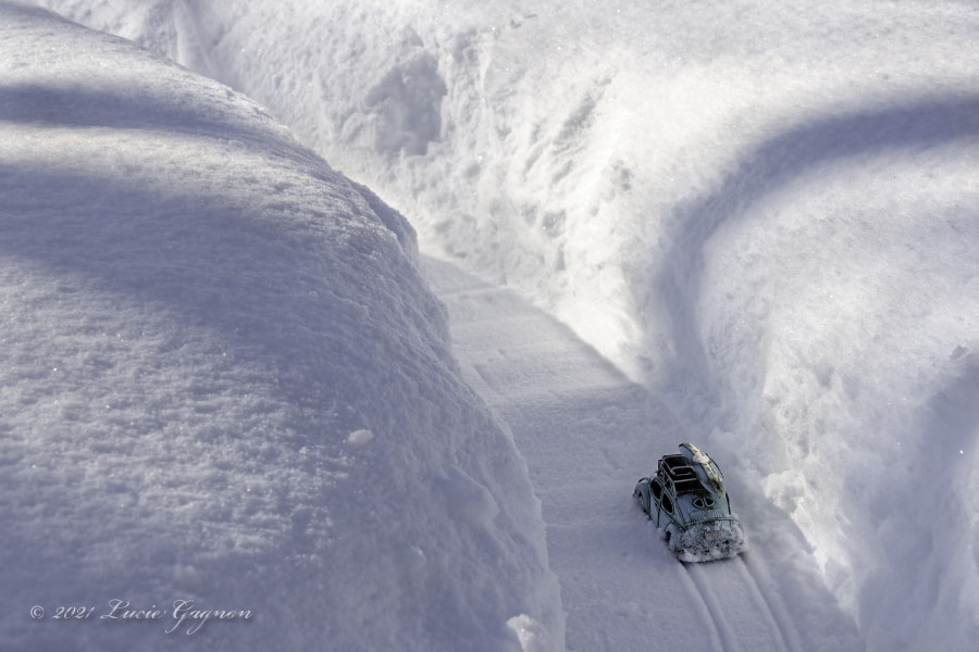 Heading South by Lucie Gagnon on 500px.com