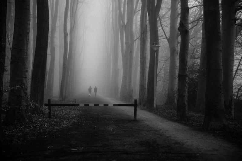 misty walk by Liesbeth van der Werf on 500px.com