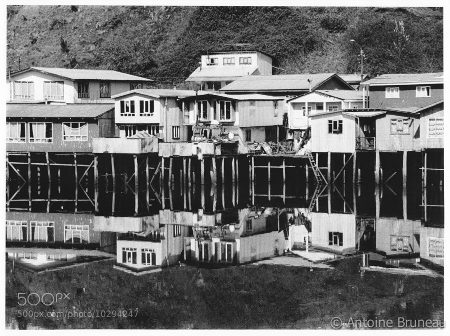 Stilt Houses [film photography]