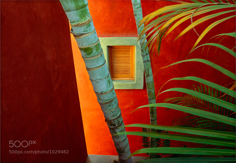 Photograph Costalegre Dream by Jim Nilsen on 500px