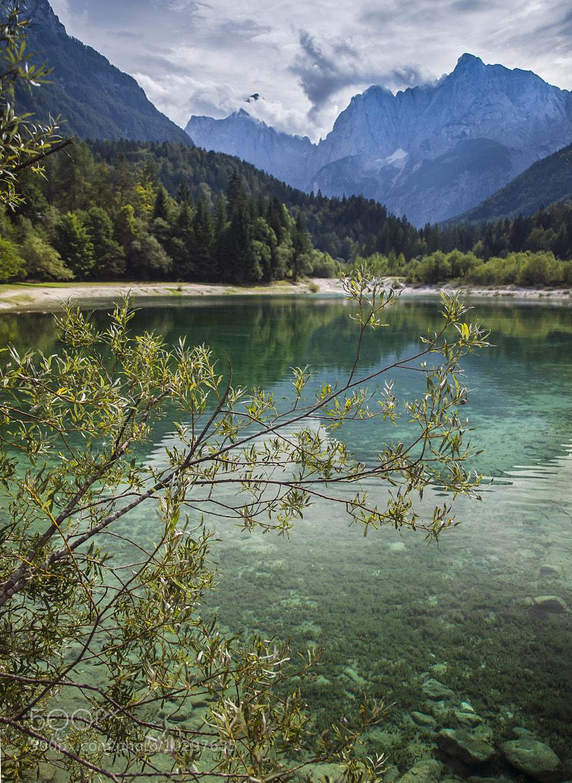 Photograph Kranjska Gora View by Stevan Tontich on 500px