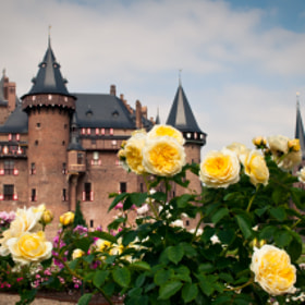 De Haar Castle by Glafira Kushnir (countessg)) on 500px.com