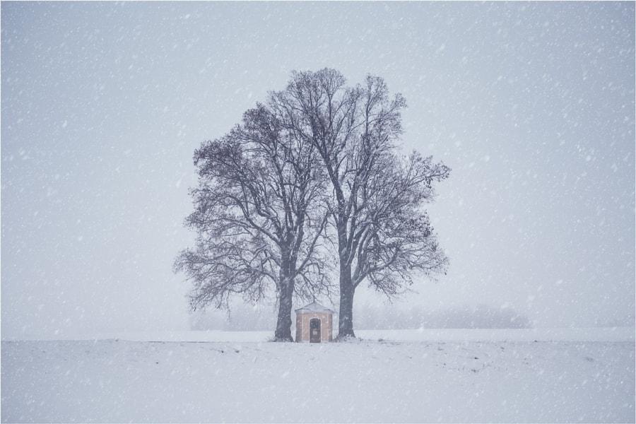 [ winter auf der alb ] by DEIWAT  on 500px.com