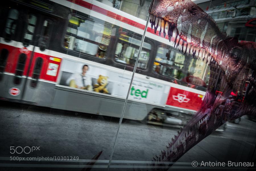 Eat my Tram