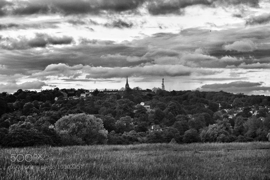 View from Parliament Hill on Hampstead Heath.