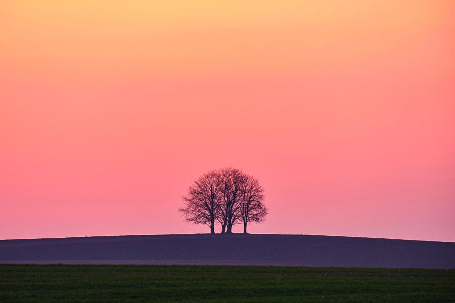 Before sunrise by Richi Komlosi on 500px.com
