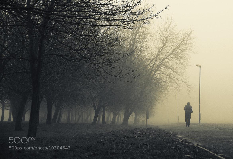 Photograph Foggy goodness by Alex France on 500px