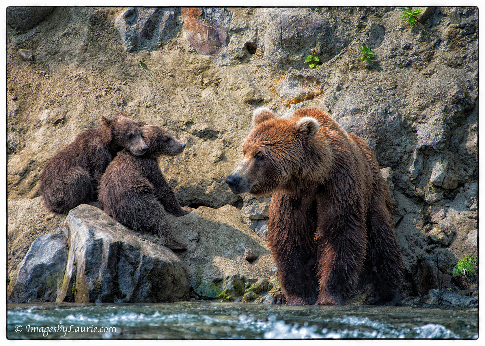 Photograph Waiting for dinner by Laurie Rubin on 500px