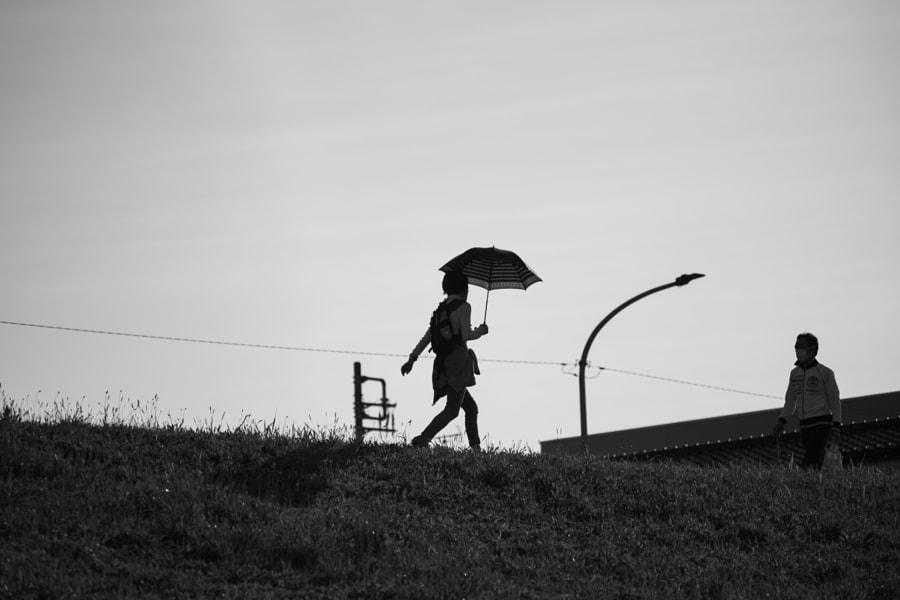 parasol by Shinya Hirata on 500px.com