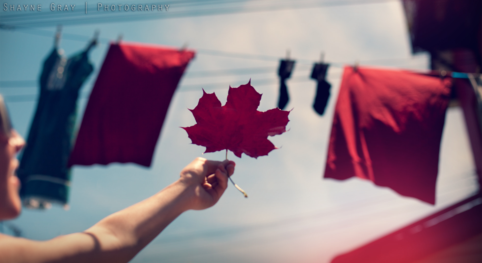 Photograph Happy Canada Day! by shayne gray on 500px