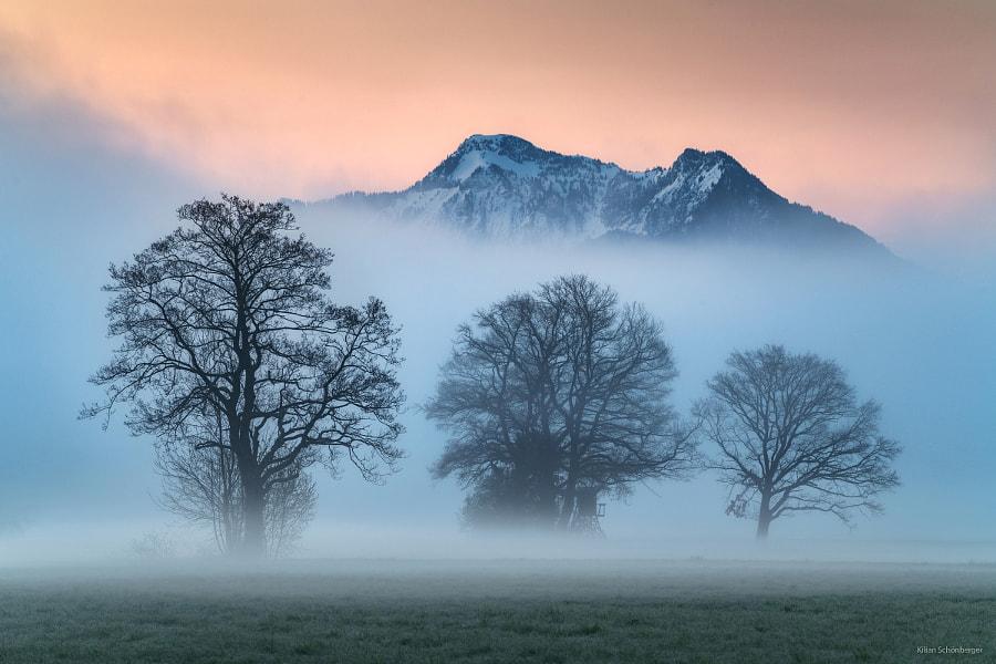 Mountain Morning by Kilian Schönberger on 500px.com