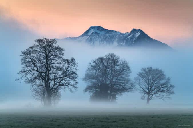 Mountain Morning by Kilian Schnberger