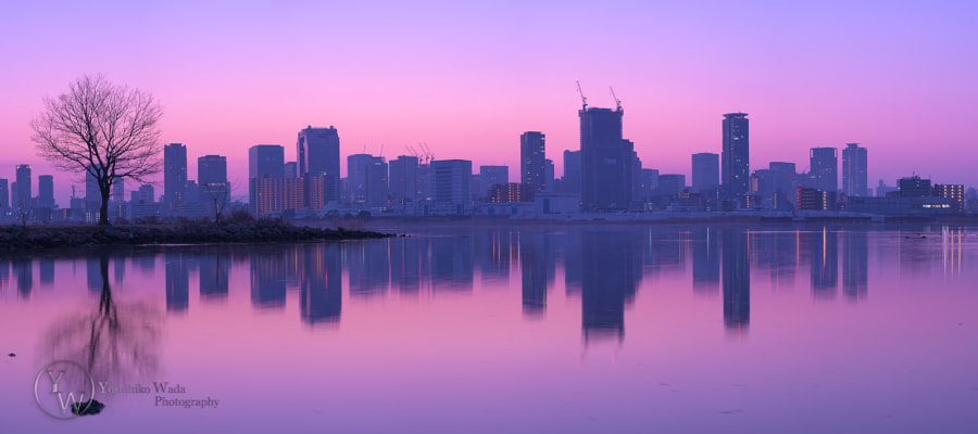 Twilight Purple by Yoshihiko Wada on 500px.com