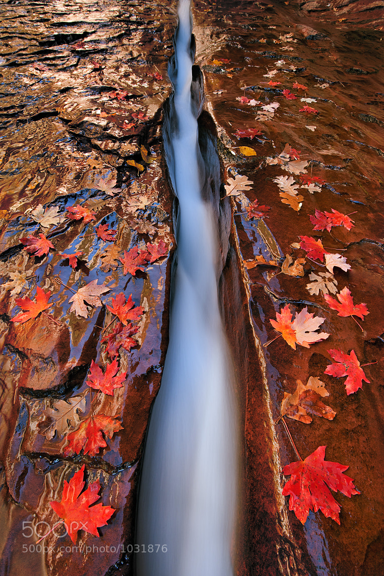 Photograph The Crack by Ian Plant on 500px
