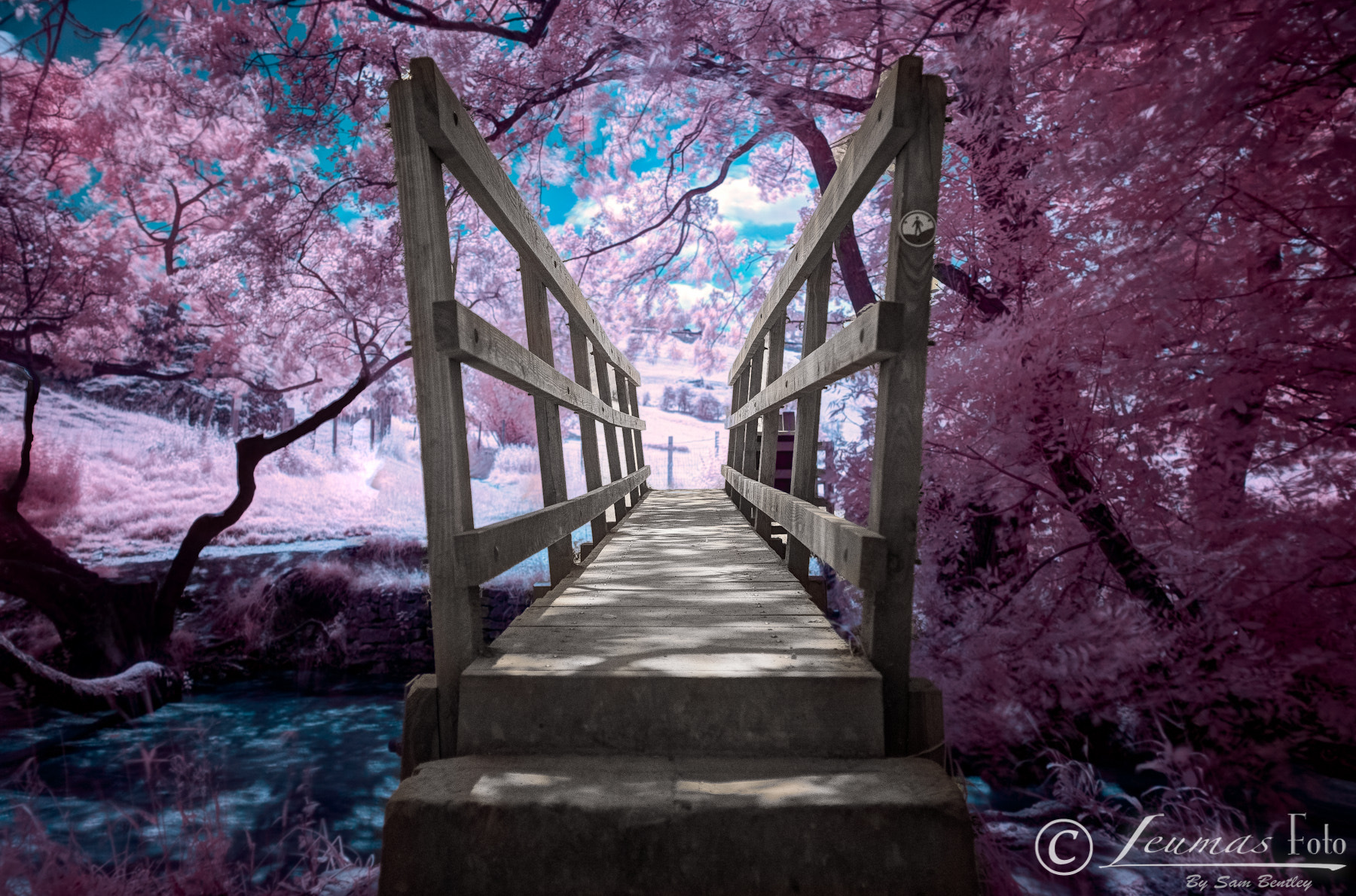Photograph Bridge in Infrared, Dovedale by Sam Bentley on 500px