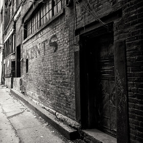 Downtown Toronto #1 by Milan Juza (milanjuza)) on 500px.com