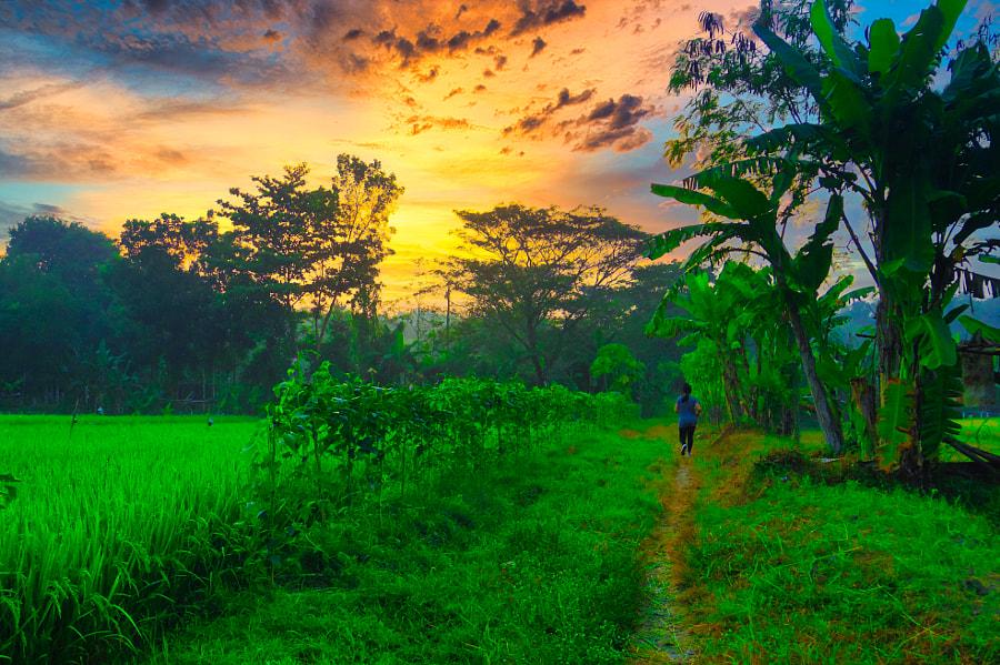 Morning Jog by I Putu Cahya Legawa on 500px.com