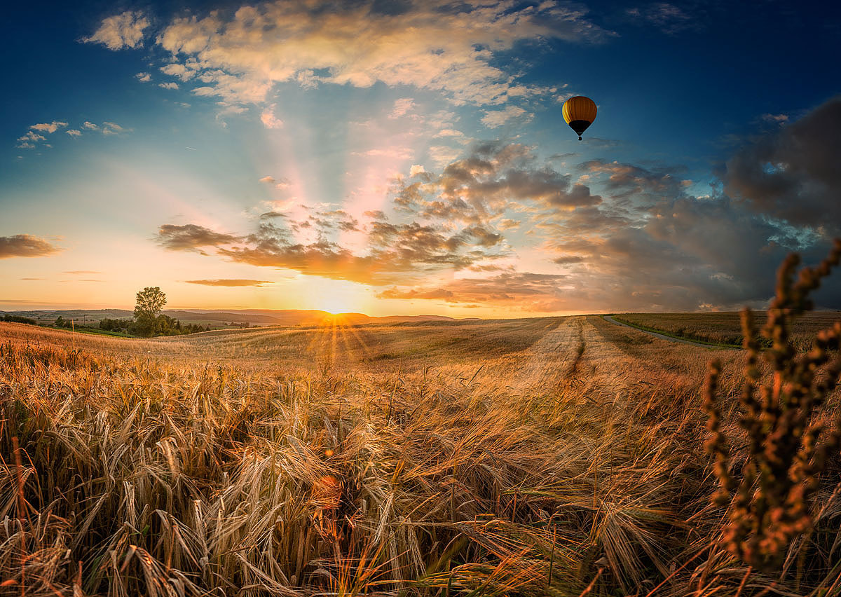 Photograph Flying home by Armin Barth on 500px