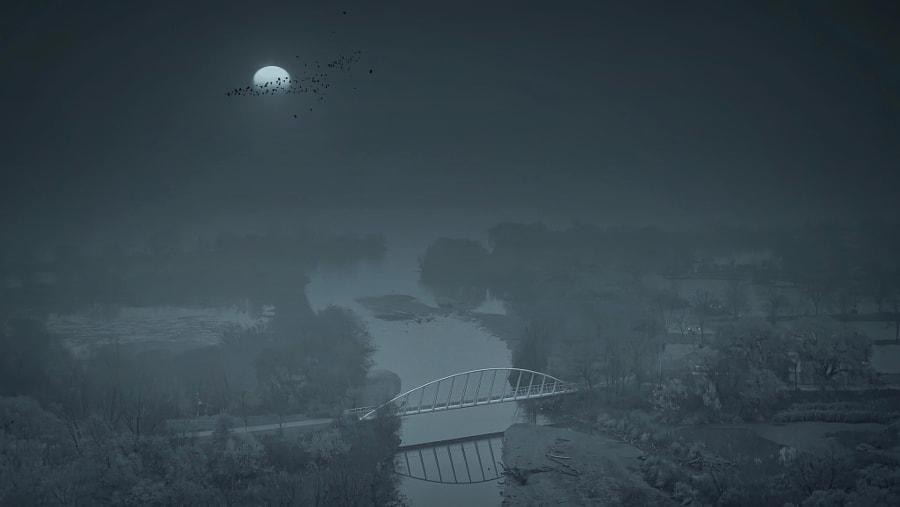""" … in the (foggy) night. ""  by B N on 500px.com"