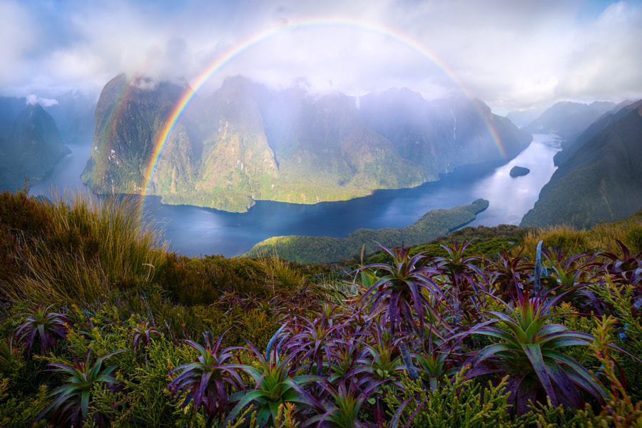 Hope From Doubt by William Patino on 500px.com