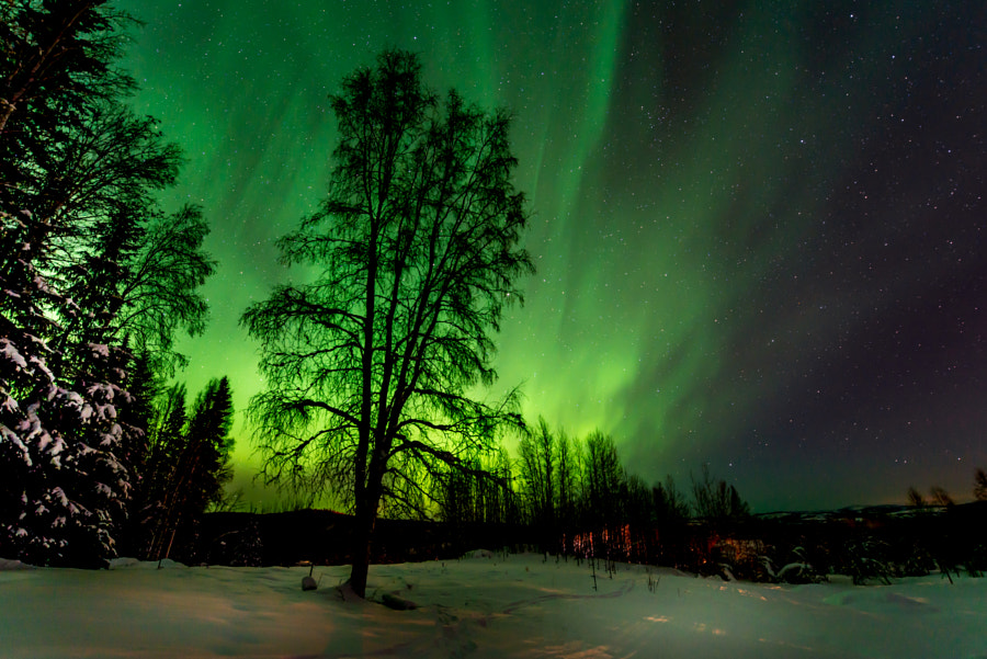 Aurora Borealis by Dean Bailey on 500px.com