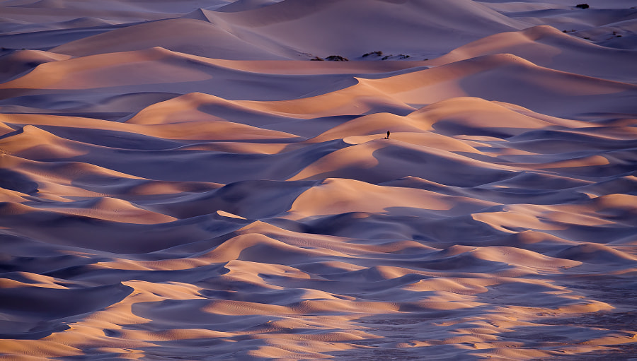 Sand Dunes by Karen Abel on 500px.com