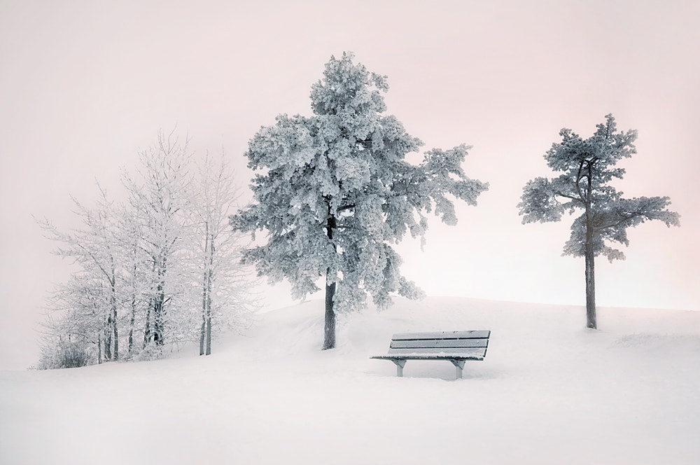 Photograph Silence by Mikko Lagerstedt on 500px