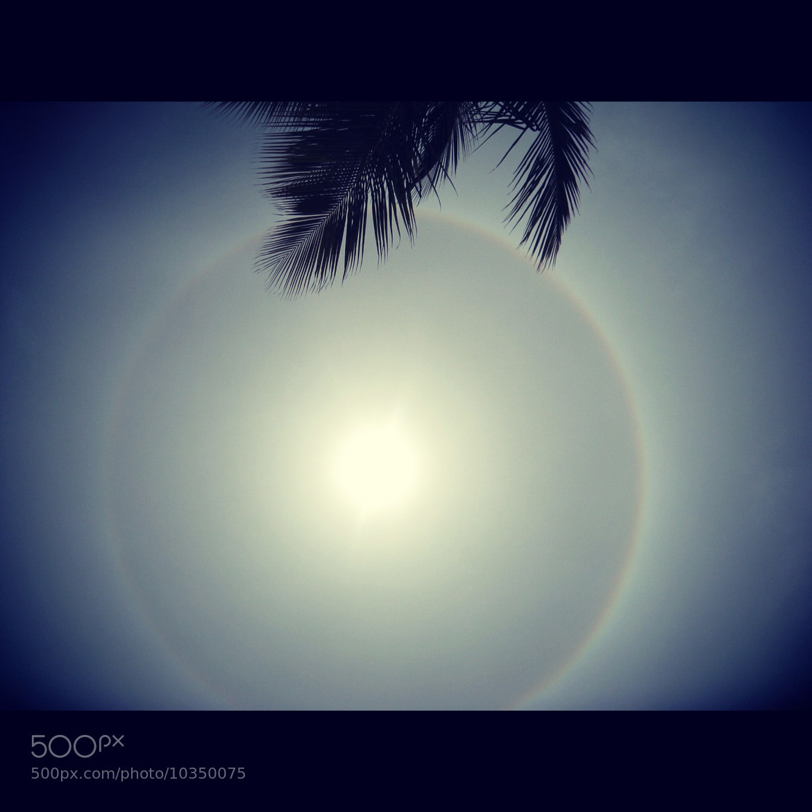 Photograph Sun...Rainbow circle by Jelena Lekic-Filipovic on 500px