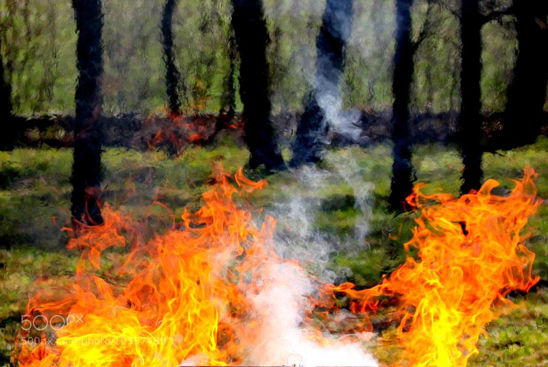 Photograph Ogień 1 by Anita Kryszkiewicz on 500px