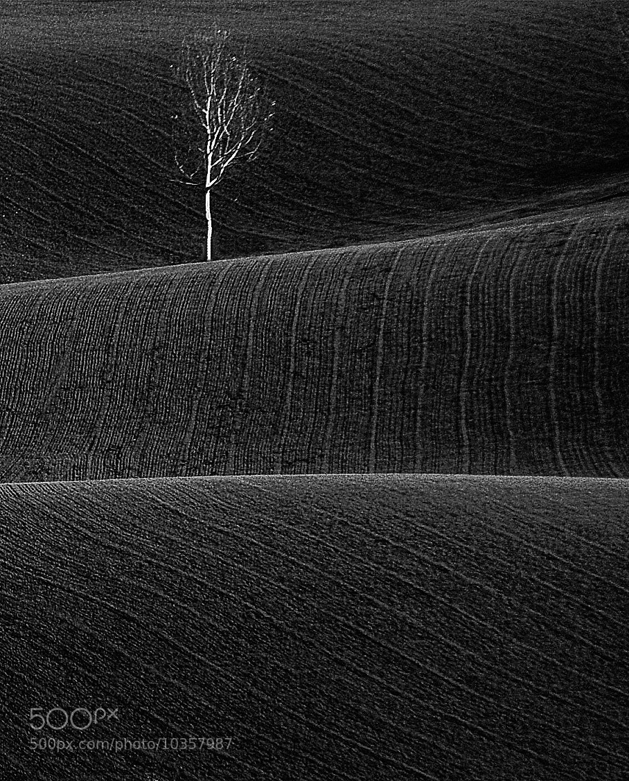 Photograph   lines by Silena  Lambertini on 500px