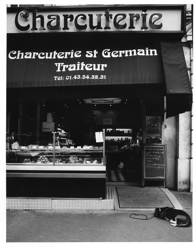 Photograph Waiting at the butcher shop, Paris by Bob Soltys on 500px