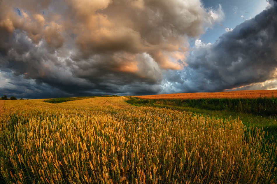 Photograph storm fields by Piotr Krol on 500px