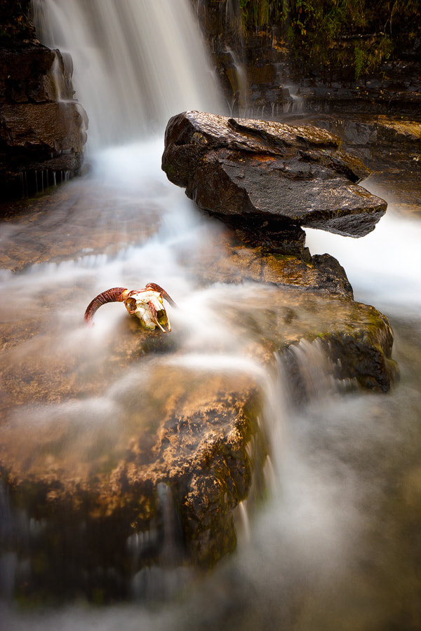 Photograph Death Flows by Paul Sutton on 500px