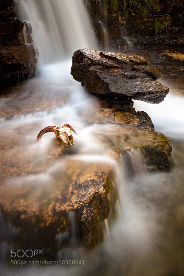 Photograph Death Flows by Paul Sutton on 500px