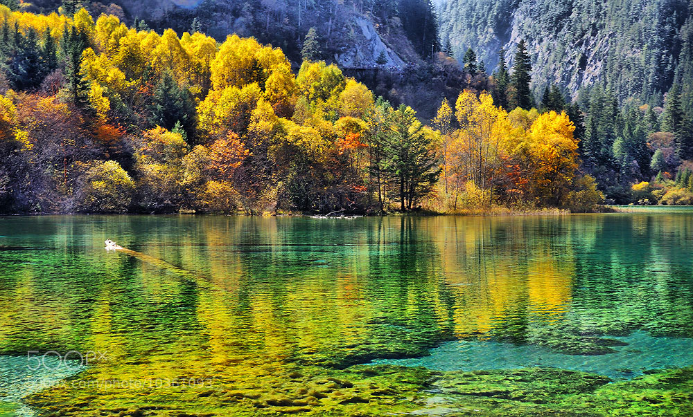 Photograph yellow reflection  by Jumrus Leartcharoenyong on 500px