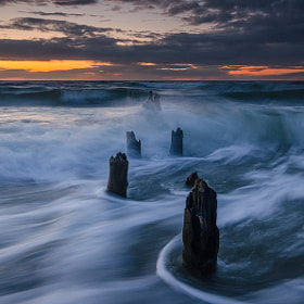 Motion in the last daylight by Dietrich Bojko (globalindex)) on 500px.com