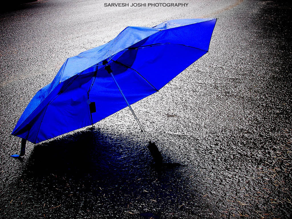 Photograph The Blue Umbrella by Sarvesh Joshi on 500px