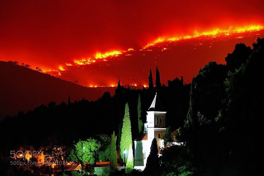 Huge flames swallowing the pine forest on the slopes of Mosor mountain, Croatia